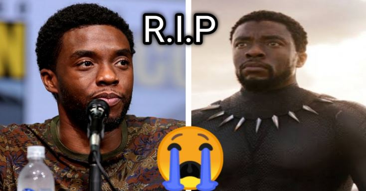 Chadwick Boseman as Black Panther dies of cancer at 43 superheroera a