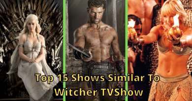 Best 15 Shows To Watch If You Liked The Witcher TV Show